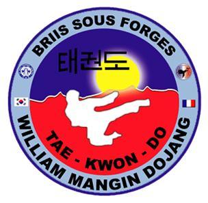 Ecusson brodé à l'effigie du club de Taekwondo
